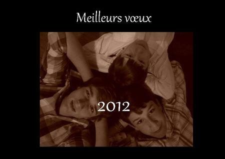 Voeux_2012_blog