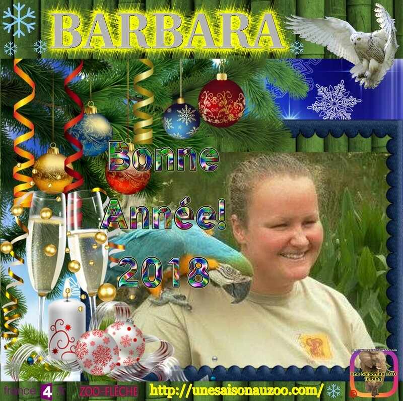 BARBARA 0 Nouvelle an 2018
