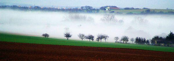 Viville brouillard (3)