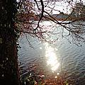 Lac Christus 0112154
