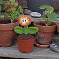 Mario fireflower