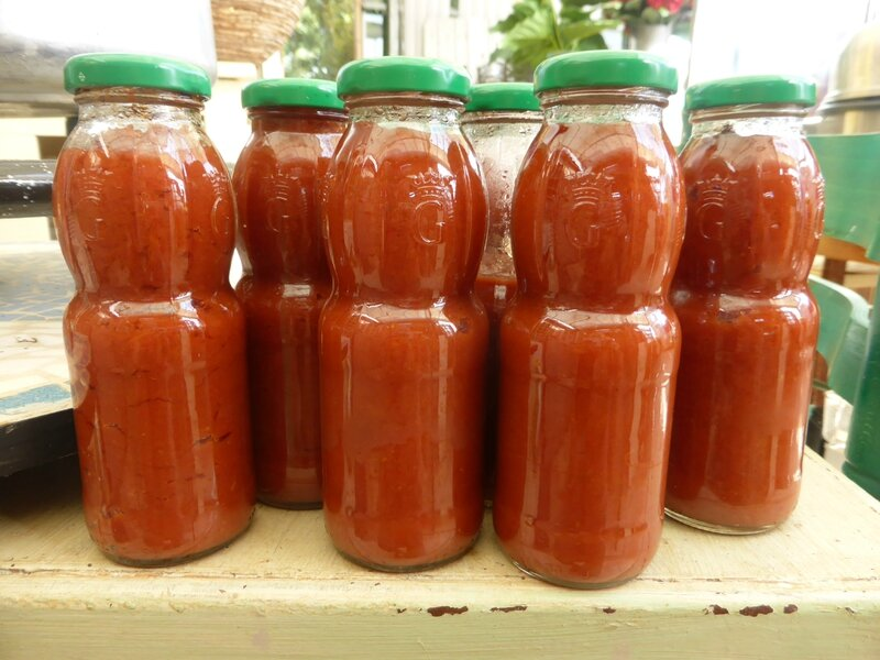 16-coulis de tomates concentré (1)