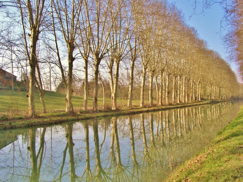 CANAL AUTOMNE 013