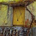 cabane jaune abandonnée