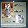 composition chats sur chassis peintre