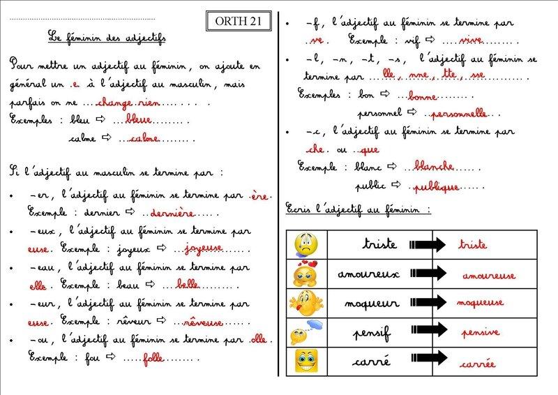ORTH 21 CE1 : le féminin des adjectifs - La classe des CE de Villebois