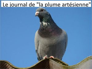 image pour journal