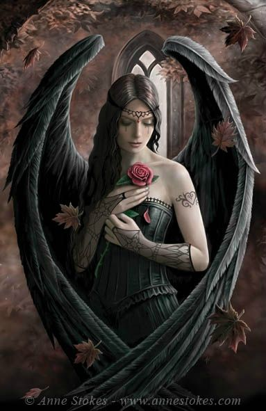 Angel_Rose_by%20Anne%20Stokes[1]