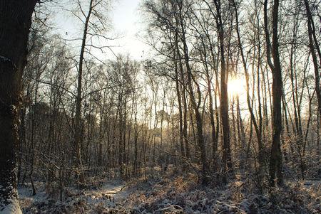 foto_neige_3