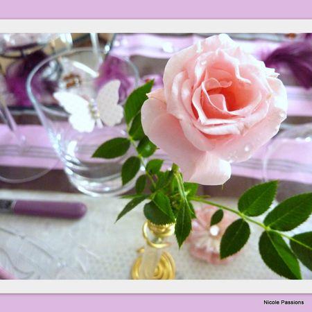 table_scrap_rose5
