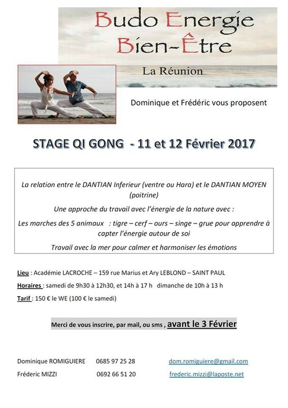stage qi gong fev17