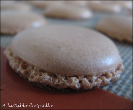 coque_macaron