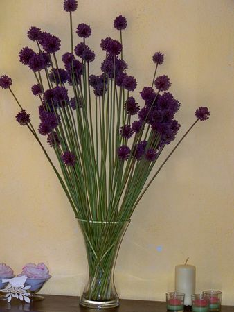 Bouquets_fleurs_d_ail__fleurs_champ_tres_035