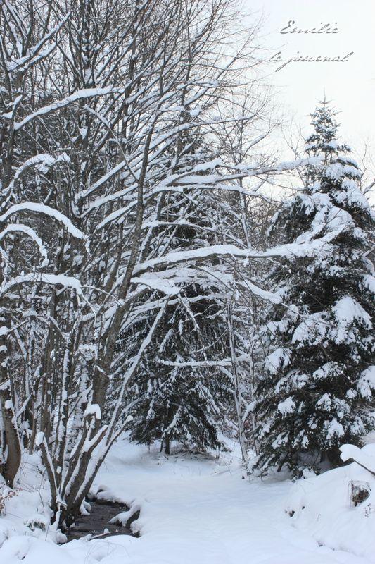 Hohwald neige10