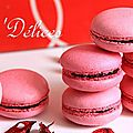 Macarons aux Fruits Rouges