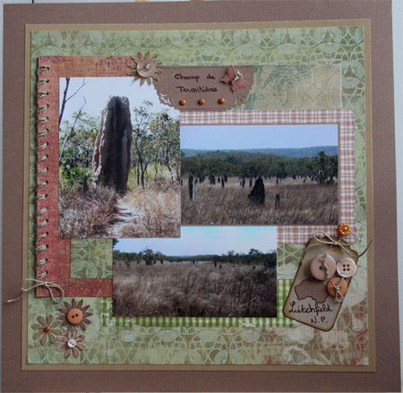 termiti_res_litchfieldNP