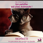 ANIMAUTE - Garde chat