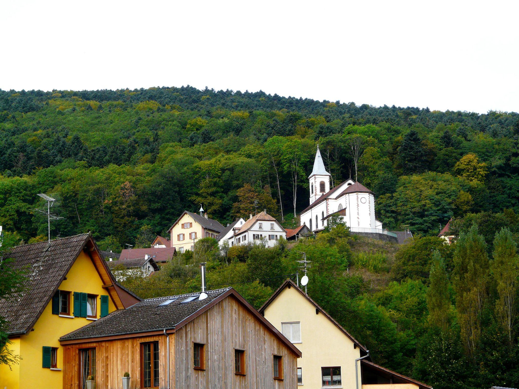 Rimbachzell (1)