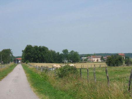 Gruey-lès-Surance (35)