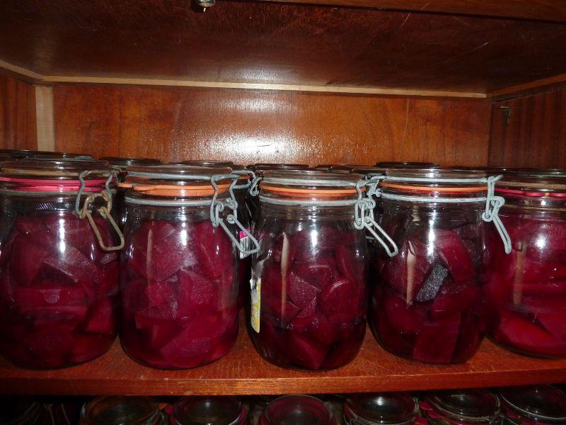 betteraves rouges-sans eau ni sel