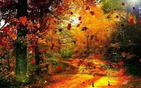 paysage_automne2