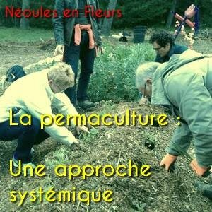 permaculture une approche systemique