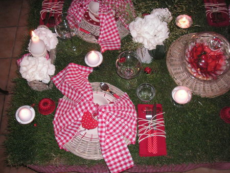 table_picnic_060