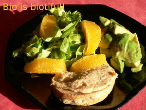salade_avocat_oranges_toast_2