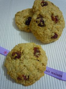 cookies flocons d'avoine cranberries (9)