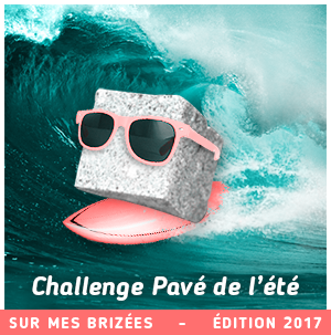pave-2017-small
