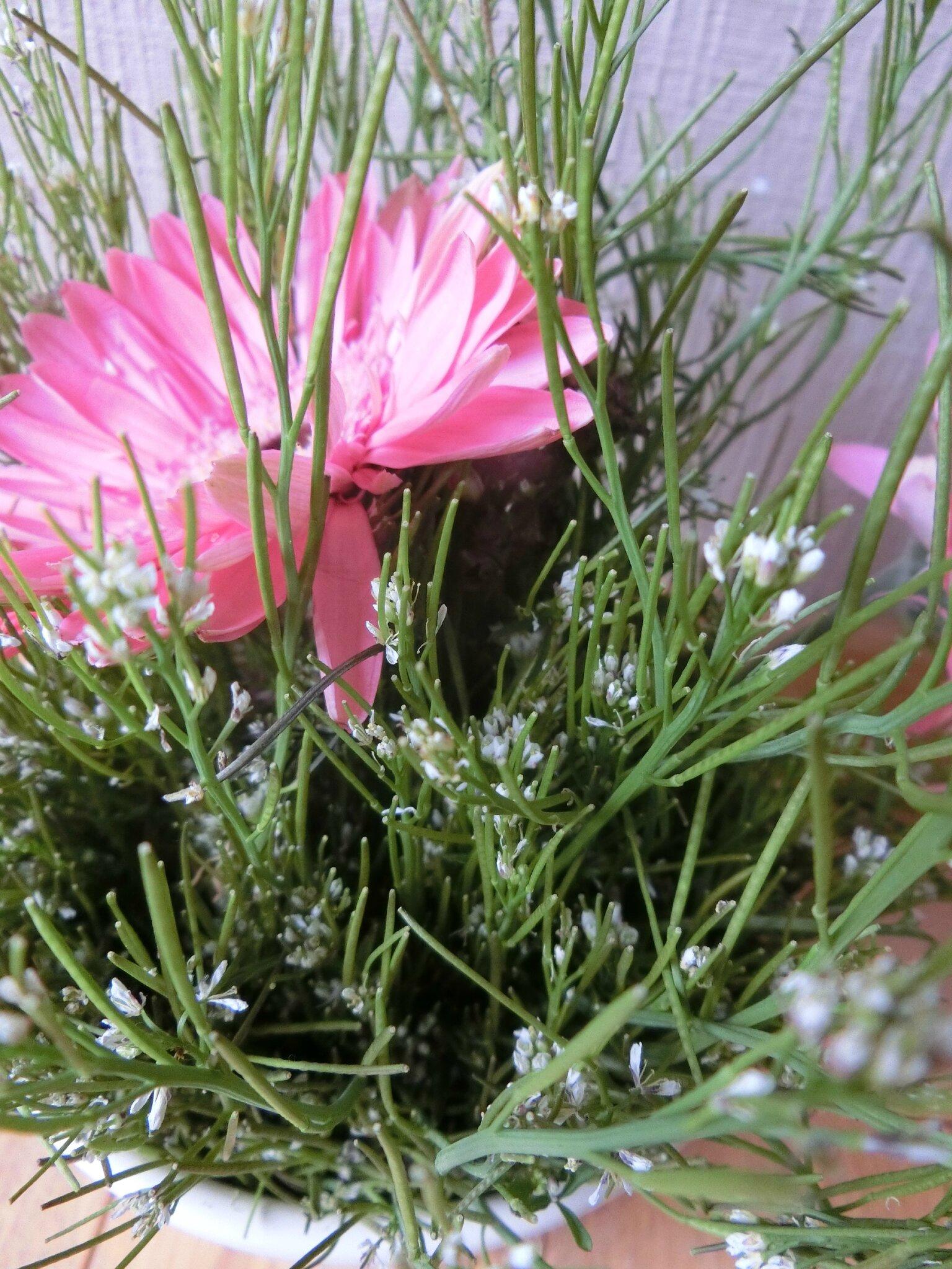 utiliser des mauvaises herbes dans un bouquet brin et brindille atelier saisonnier. Black Bedroom Furniture Sets. Home Design Ideas