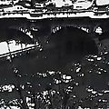 Vidéo haïkus de chris marker - 1994
