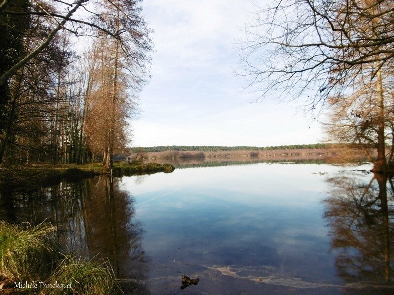 1-Lever de soleil, Lac Soustons, Golf, Chalet 310117