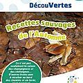 Cape Decouvertes n°23 recoltes Automne