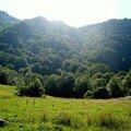 vallée du Fouillet
