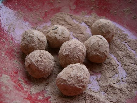 Truffes_avril_2009__2_