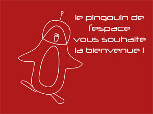 pingouinbienvenue