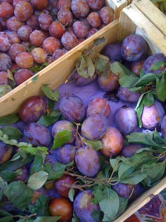 prunes (600x800)