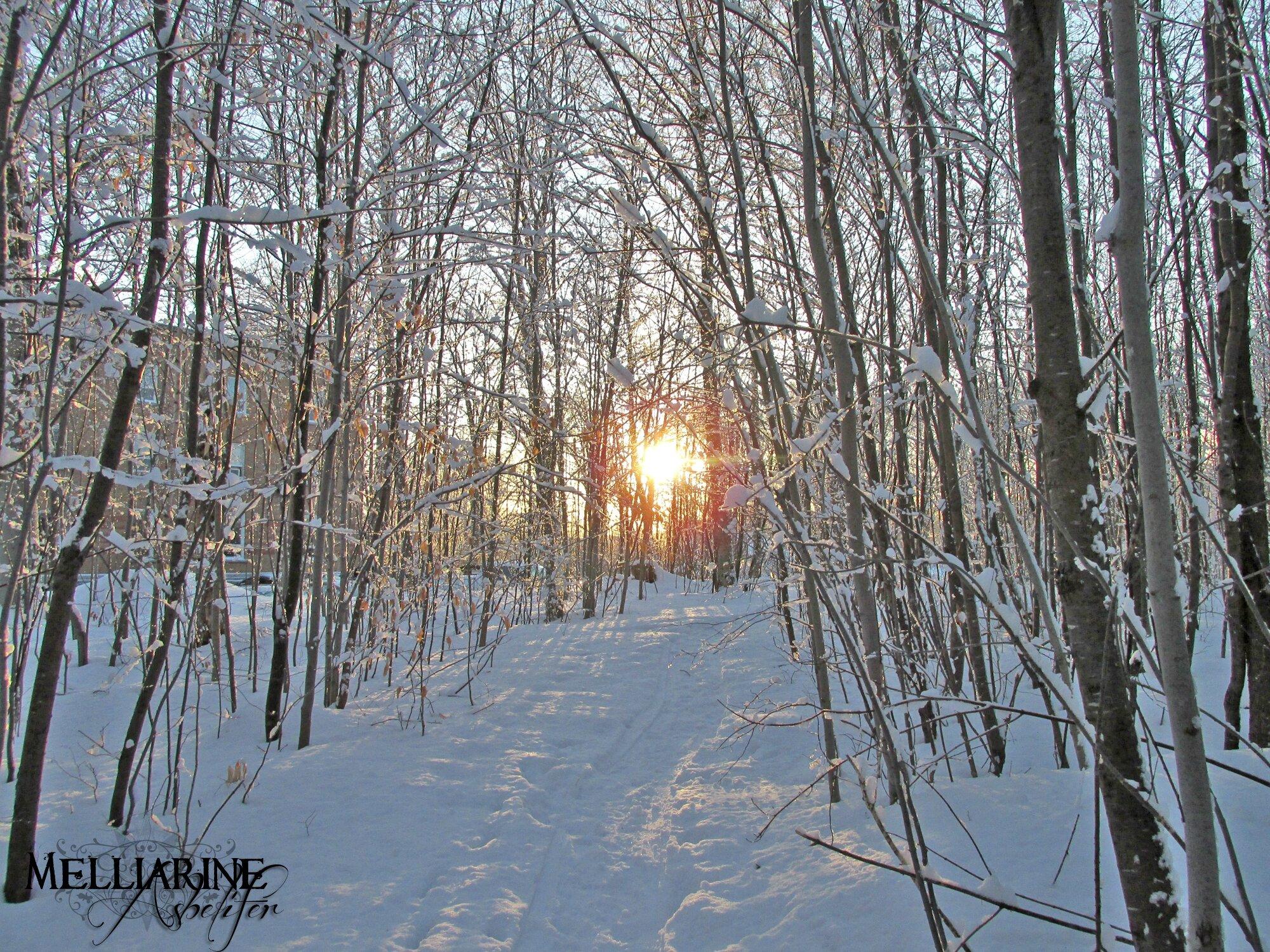 Le sabbat d'imbolc - 1er février