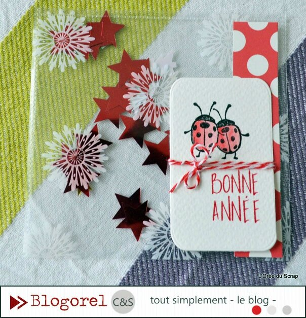 dt c&s tout simplement blogorel shaker box3