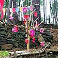 arbre aux roses yurtao