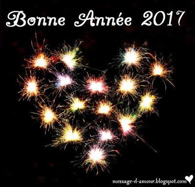 bonne_ann_e_2017__1_