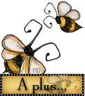 a_plus