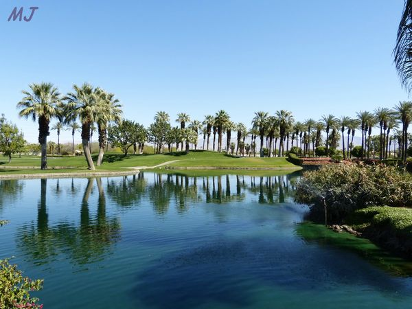 GOLF PALM DESERT