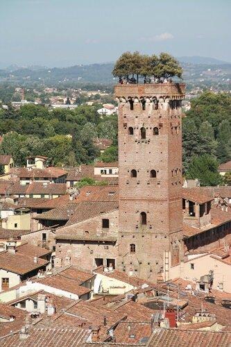 Lenascrap Lucca Torre Guinigi