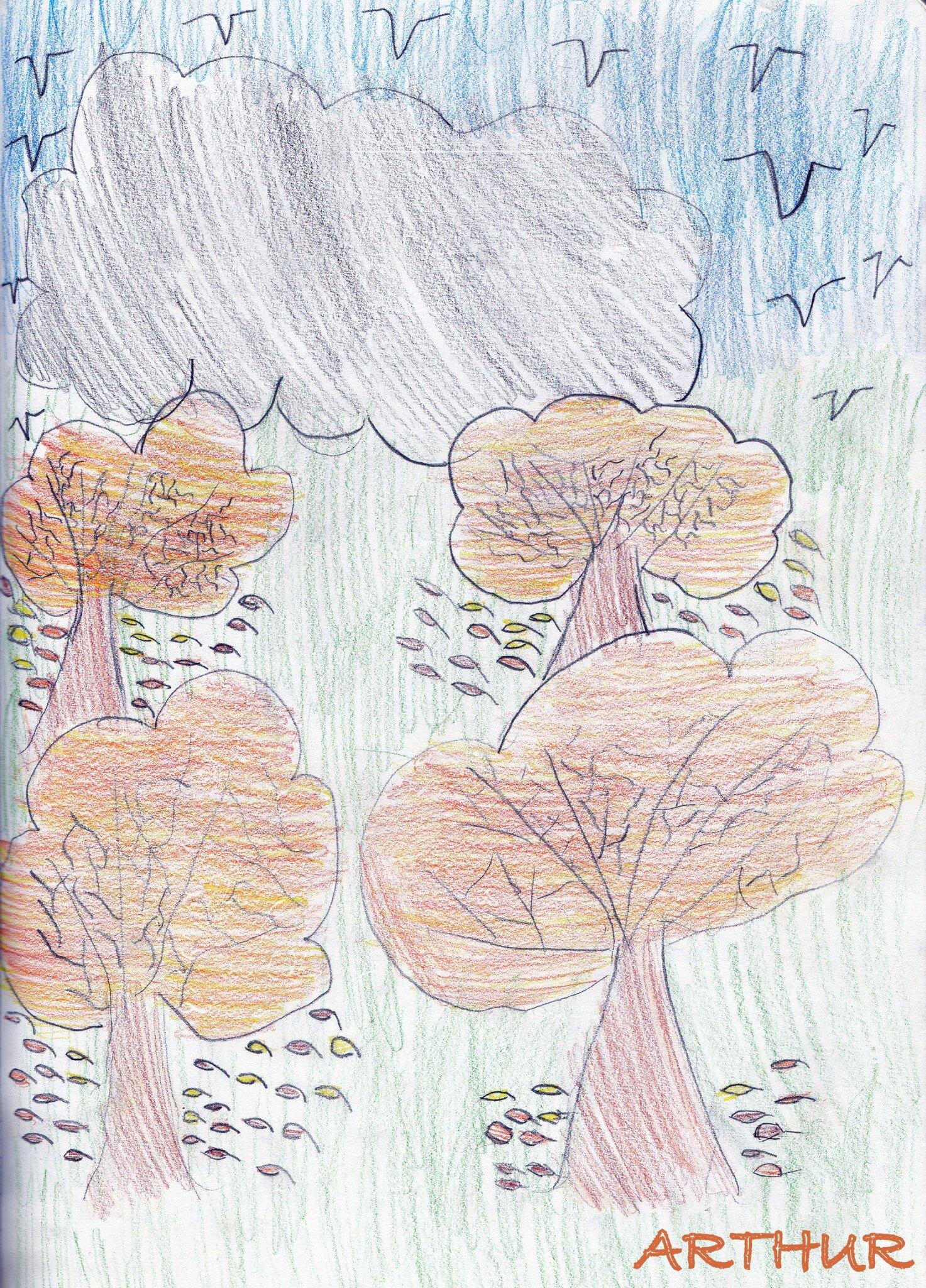 arbres d'Arthur 2013