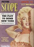 mag_picturescope_cover
