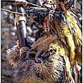La chasse au leurre (nouveau costume du bal des oiseaux)