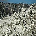 Rando raquettes vercors - premières neiges très très précoces (villard de lans)