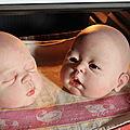 2013 - bébés reborns pour France 2 -